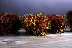 Rambutans fruit with leaf on table. Rambutan or hairy lychee.  Royalty Free Stock Photos