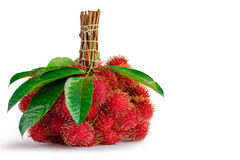 Rambutans fruit with leaf. On white background Royalty Free Stock Images