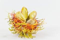 Rambutans läcker thailändsk frukt Arkivfoton