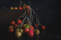Rambutans Royalty Free Stock Photography