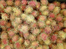 Rambutans. A photo of red Rambutans & x28; Nephelium lappaceum Linn, N. lappaceum & x29; background, closeup Royalty Free Stock Images