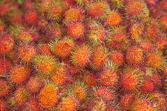 Rambutans Stock Photography
