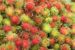 Rambutans Tropical Fruit Stock Photos
