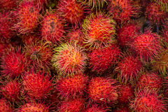 Rambutans tropical fruit in Thailand. Rambutans tropical summer asian fruit cover background Royalty Free Stock Photos