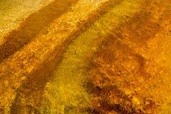 Rame ad ovest del bacino del geyser del pollice e giallo, Yellostone P nazionale Immagine Stock