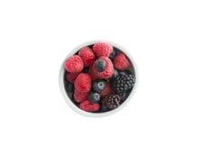 Ramekin of fresh fall or autumn berries Royalty Free Stock Photo