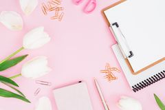 Ramen av vita tulpan blommar, skrivplattan, gem och sax på rosa bakgrund Bloggerbegrepp Lekmanna- lägenhet, bästa sikt Royaltyfri Bild