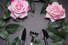 ramen för den bästa sikten av att arbeta i trädgården hjälpmedel, steg sidor, steg blommor Royaltyfria Bilder