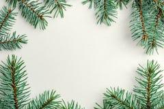 Ramen för det nya året som göras från gran, förgrena sig på en vit bakgrund Arkivbild