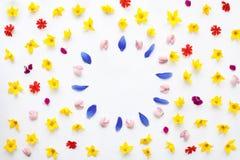 Ramen för lekmanna- färg för lägenheten blommar den blom- med trädgården och ängen Royaltyfri Fotografi