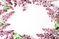 Ramen med lilan blommar, filialer, sidor och kronblad Arkivfoton