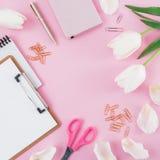 Ramen med tulpanblommor, rånar av kaffe, skrivplattan, gem och exponeringsglas på rosa bakgrund Bloggerbegrepp med kopieringsutry Royaltyfri Foto