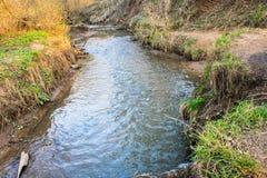 Ramenka小河的镇静流程 加强的春天阳光唤醒自然 免版税图库摄影