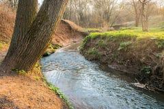Ramenka小河的镇静流程 加强的春天阳光唤醒自然 库存照片
