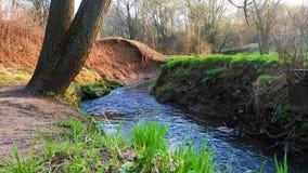 Ramenka小河的镇静流程 加强的春天阳光唤醒自然 股票录像