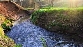 Ramenka小河的镇静流程 加强的春天阳光唤醒自然 股票视频