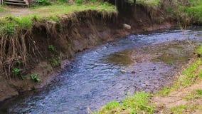 Ramenka小河的镇静流程 加强的春天阳光唤醒自然 影视素材
