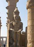 Rameses II at the Temple of Luxor Royalty Free Stock Image