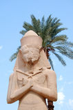 Ramesses II statue Stock Photos