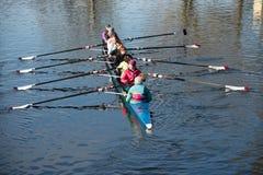 Rameurs féminins s'exerçant sur la rivière Image libre de droits