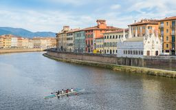 Rameurs sur Arno River, Pise, Toscane, Italie Photographie stock