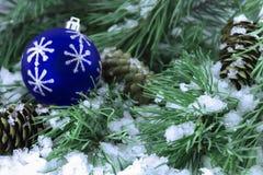 Rami attillati nella neve con le pigne e un giocattolo Fotografie Stock