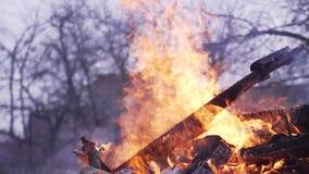 Rami brucianti degli alberi Grande falò nel giardino video d archivio