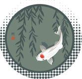 Rami del salice e della carpa a specchi Fotografie Stock Libere da Diritti