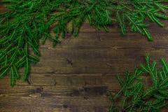 Rami dell'abete su un fondo di legno Fotografie Stock