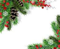 Rami dell'albero di Natale Fotografie Stock