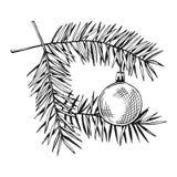 Rami dell'albero di Natale con il giocattolo abete Fotografia Stock