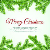 Rami dell'albero di Natale di vettore con i fiocchi di neve Fotografia Stock