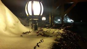 Rami dell'albero di Natale e bacche rosse su una lanterna sotto una neve di caduta video d archivio