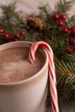 Rami della cioccolata calda, del bastoncino di zucchero e del sempreverde Fotografie Stock