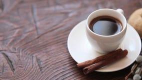 Rami della tazza e del salice di caffè, limone asciutto, cannella video d archivio