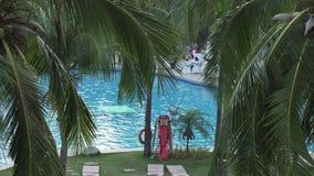 Rami delle palme sui precedenti dello stagno nel video di riserva del metraggio di Intime Sanya 5 della località di soggiorno archivi video