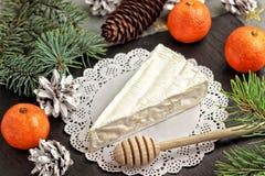 Rami di albero del mandarino del Brie e un cucchiaio di legno per miele Fotografie Stock