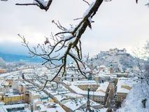 Rami di albero nella priorità alta con il fiume e la fortezza di paesaggio urbano di Salisburgo Immagini Stock