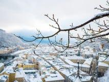 Rami di albero nella priorità alta con il fiume e la fortezza di paesaggio urbano di Salisburgo Immagini Stock Libere da Diritti