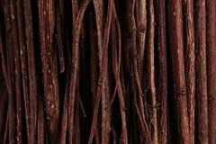 Rami di legno scuri marroni sottili vista superiore, legno Immagine Stock
