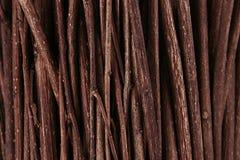 Rami di legno scuri marroni sottili vista superiore, legno Immagini Stock Libere da Diritti