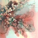 Rami di Sakura nel fondo dell'acquerello della fioritura Fotografia Stock