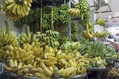 Rami gialli e banane verdi Fotografie Stock