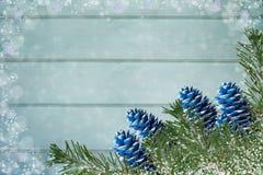 Rami innevati dell'abete e di coni colorati blu su verde chiaro Fotografie Stock