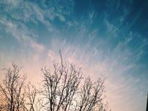 Rami nuvolosi Fotografia Stock