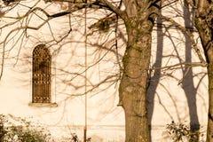 Rami sulla finestra della chiesa di secolo dell'italiano XVII Immagini Stock Libere da Diritti