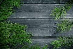 Rami verdi dell'abete su fondo di legno fotografia stock libera da diritti