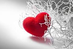 Ramificación blanca de la tarjeta del día de San Valentín con el corazón mullido rojo Foto de archivo libre de regalías