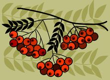 Ramificación de árbol con las frutas rojas en fondo verde Imagen de archivo