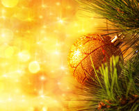 Ramificación de árbol de navidad Imagenes de archivo
